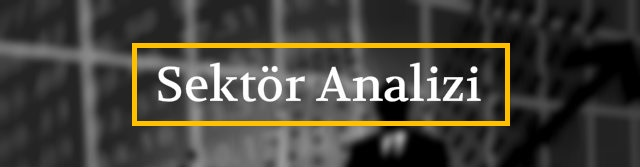 Sektör Analizi